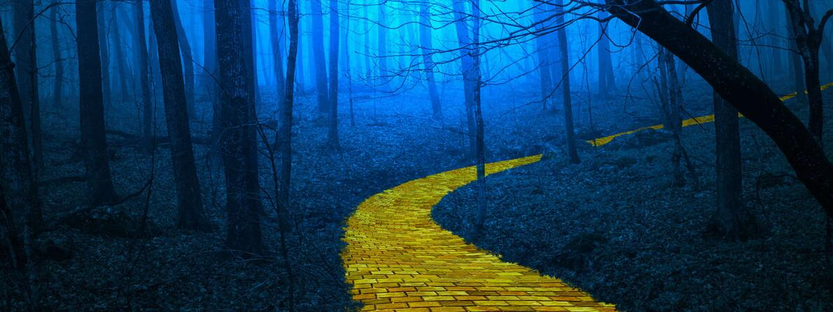 Automation-Journey-Dangerous-Path
