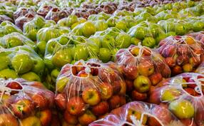 iStock-495093888 apples
